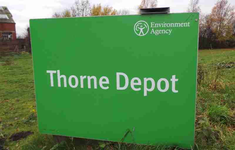 Horses removed from flood banks at Thorne