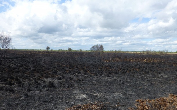 Moorland Nature Reserve Badly Affected By Fire