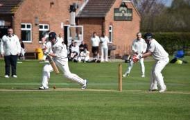Local Sport – Cricket