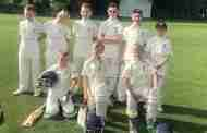 Junior Cricket Team Seek New Players
