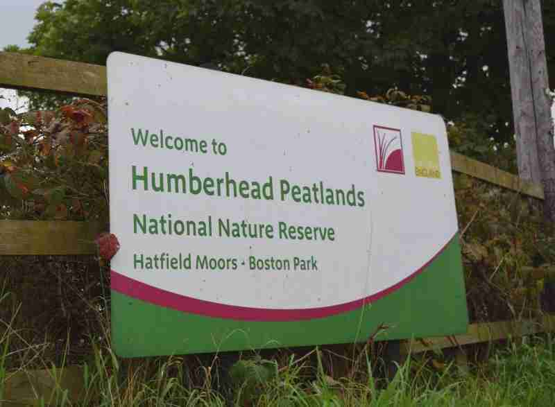 July Events On Humberhead Peatlands NNR