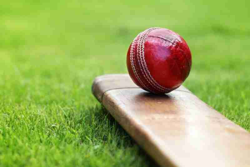 Local Sport - Cricket