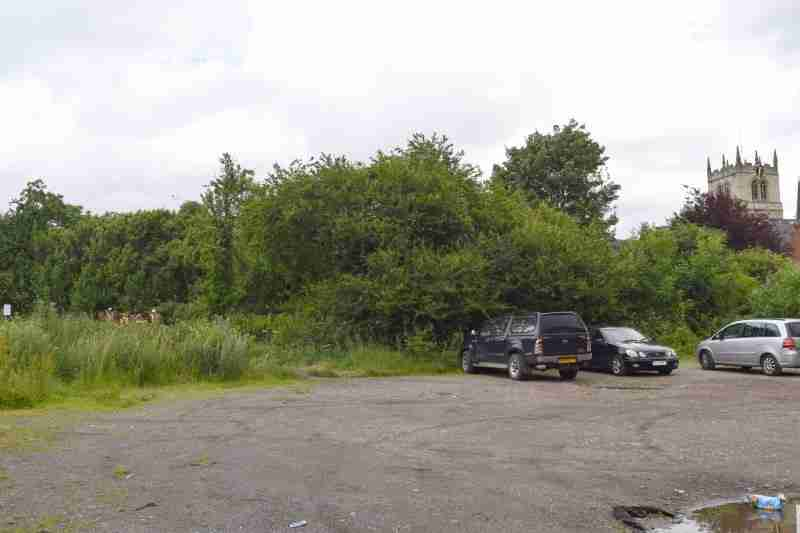 Site Survey on Land Earmarked for Development