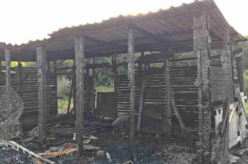 Stable Block Burnt Down In Arson Attack