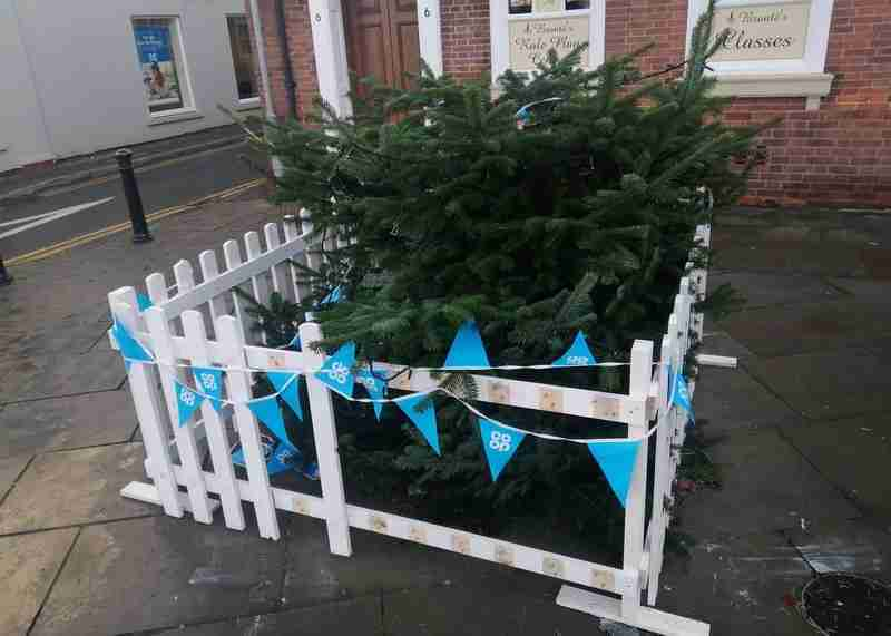 Town Centre Tree Found With Top 'Sawn-off'
