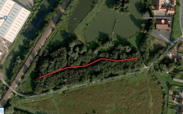 Council Advise Visitors Ahead Of Woodland Work